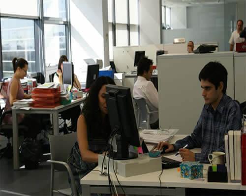 personas trabajando en computadores