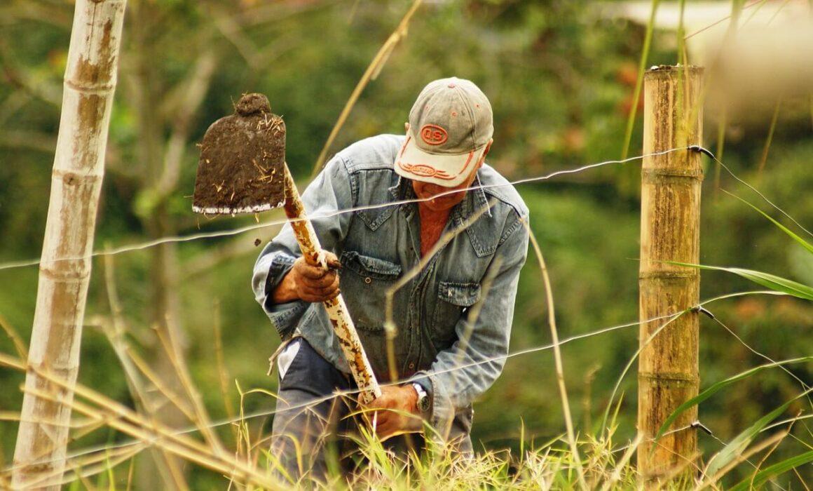 trabajador en el campo
